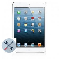 Apple iPad Mini/Mini 2 Repairs